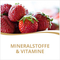 Doppelherz Mineralstoffe & Vitamine