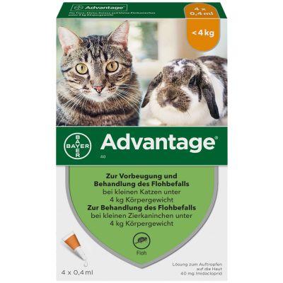Advantage 40 Katze