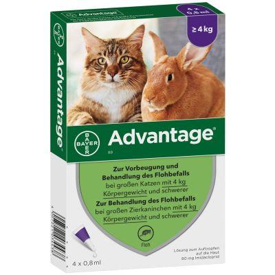ADVANTAGE 80 mg für Katzen und Zierkaninchen